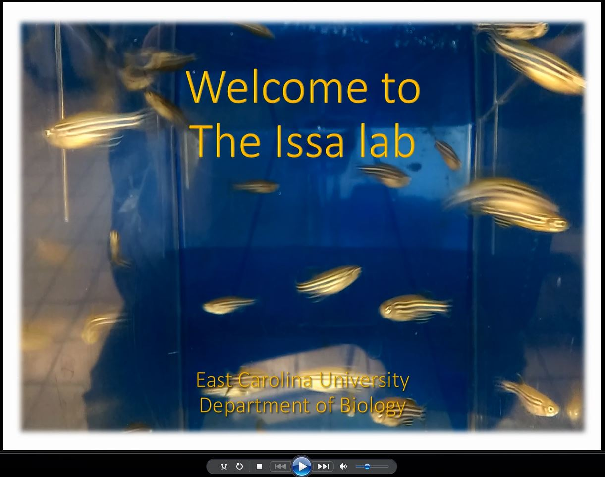 Lab video caption
